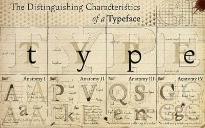 corporate typefaces - cheques
